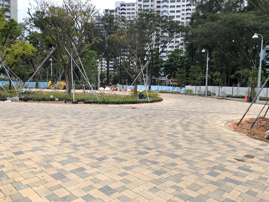 Jurong Lake Garden2